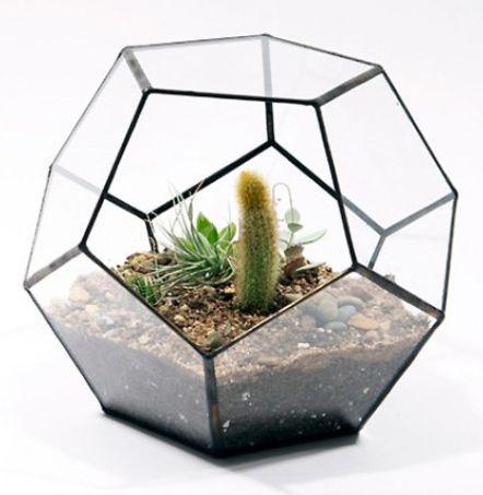 стеклянный террариум для цветов купить - Поиск в Google