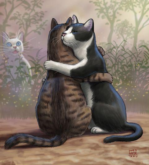 猫ぎゅ | 瞬く [pixiv] | 猫 描き方, 犬のアート, キュートな猫