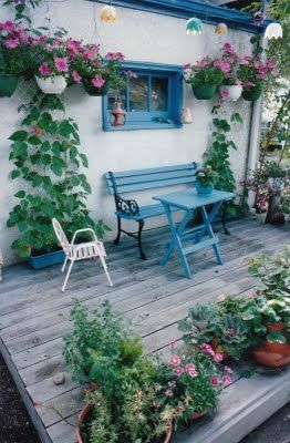 backyard deck with potted flowers
