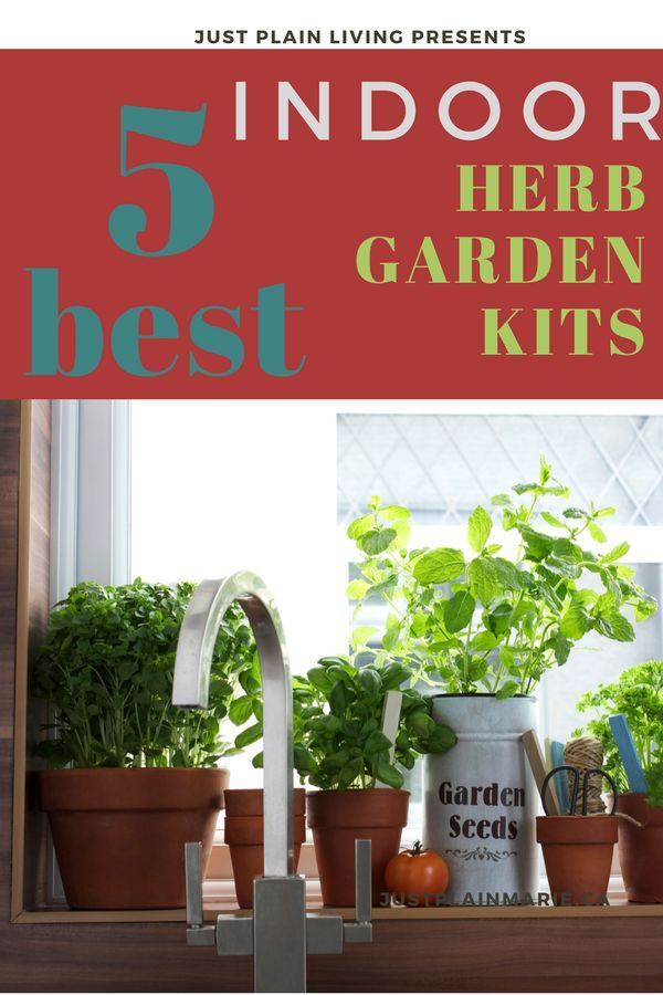 Find the Perfect Indoor Herb Garden Kit for You | Herb garden kit, Herbs indoors, Botanical ...