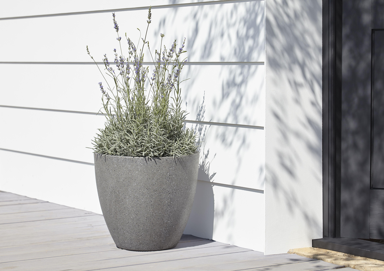 B And Q Plant Pots