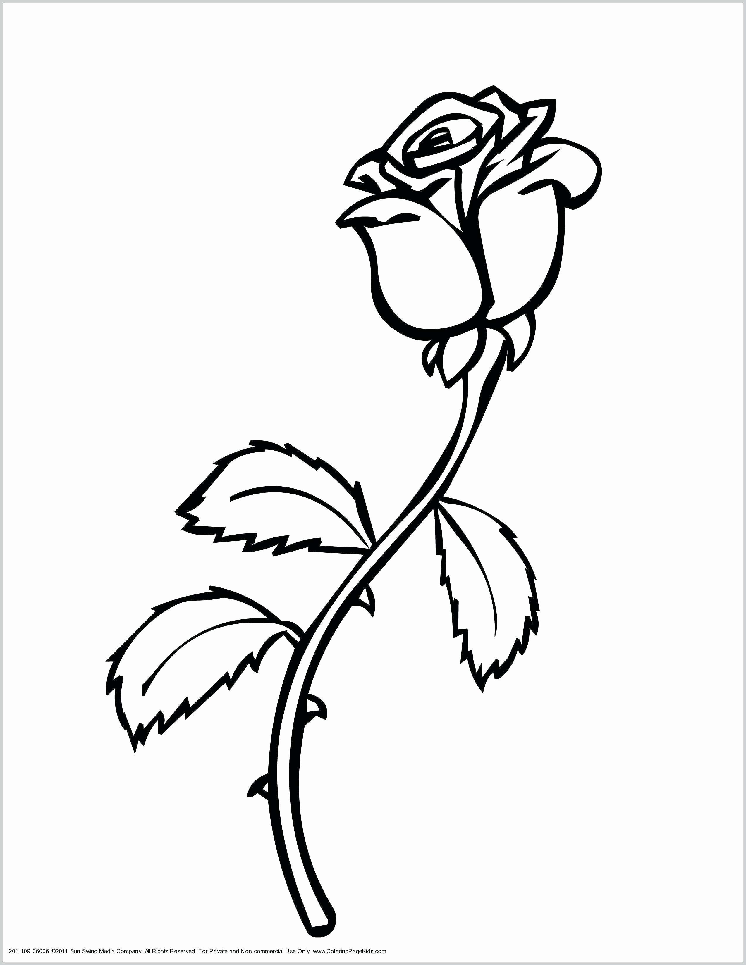 Butterfly With Flowers Coloring Pages Inspirational Daisy Flower Coloring Pages Printable Amaz Rose Coloring Pages Flower Coloring Sheets Flower Coloring Pages