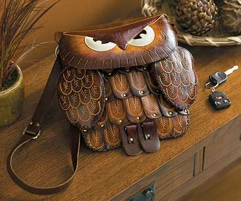 nice owl