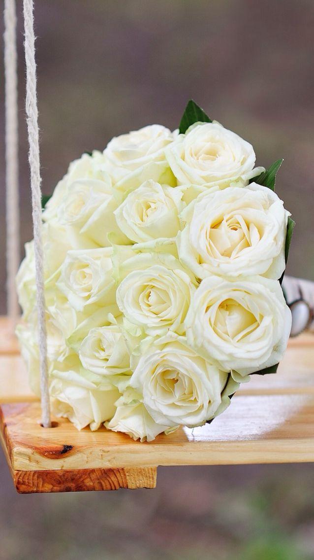 ورود بيضاء Pretty Flowers Flower Quotes Pastel Aesthetic