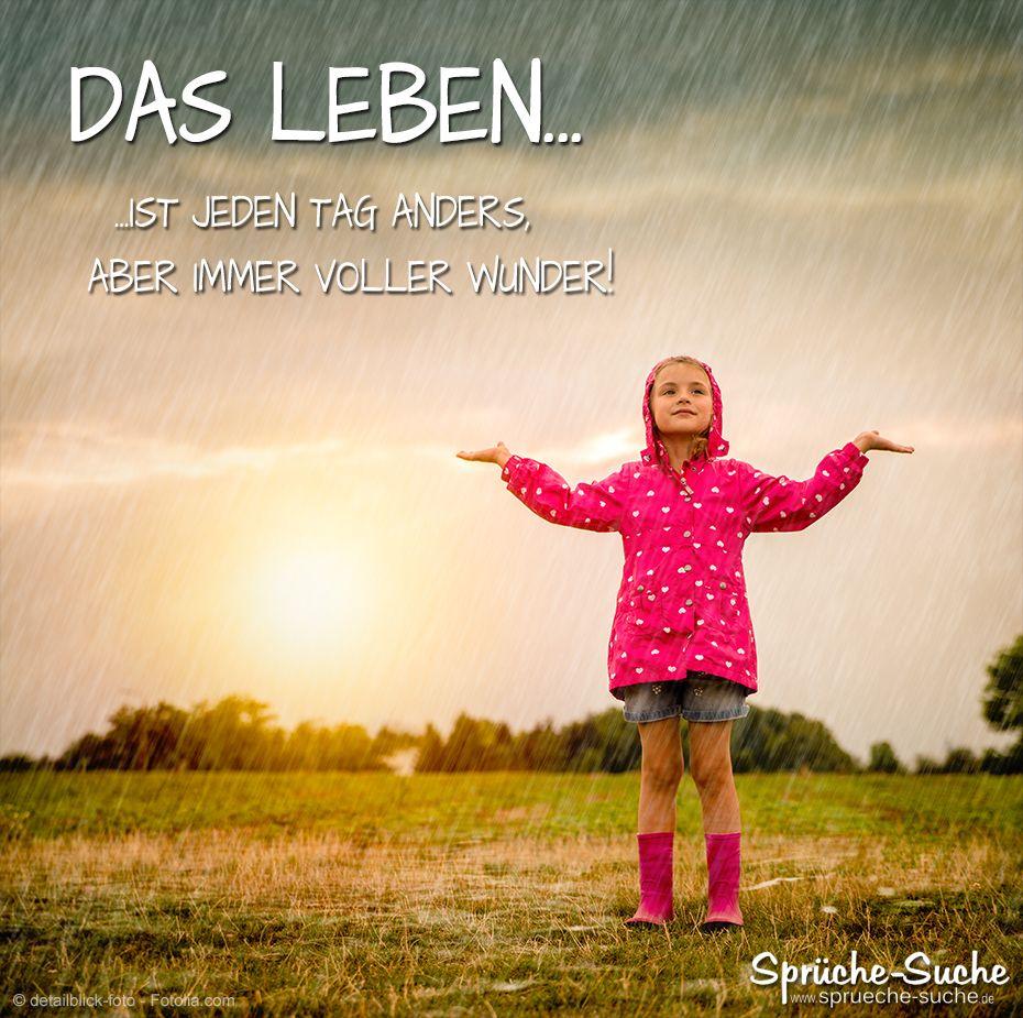 Voller Wunder - Das LEBEN | Sprüche, Schöne sprüche und ...