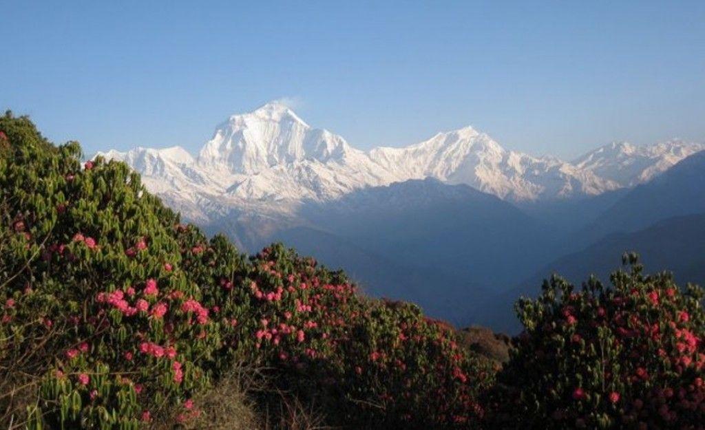 #Short & #easy #Trekking #Holiday Nepal https://www.lifehimalayatrekking.com
