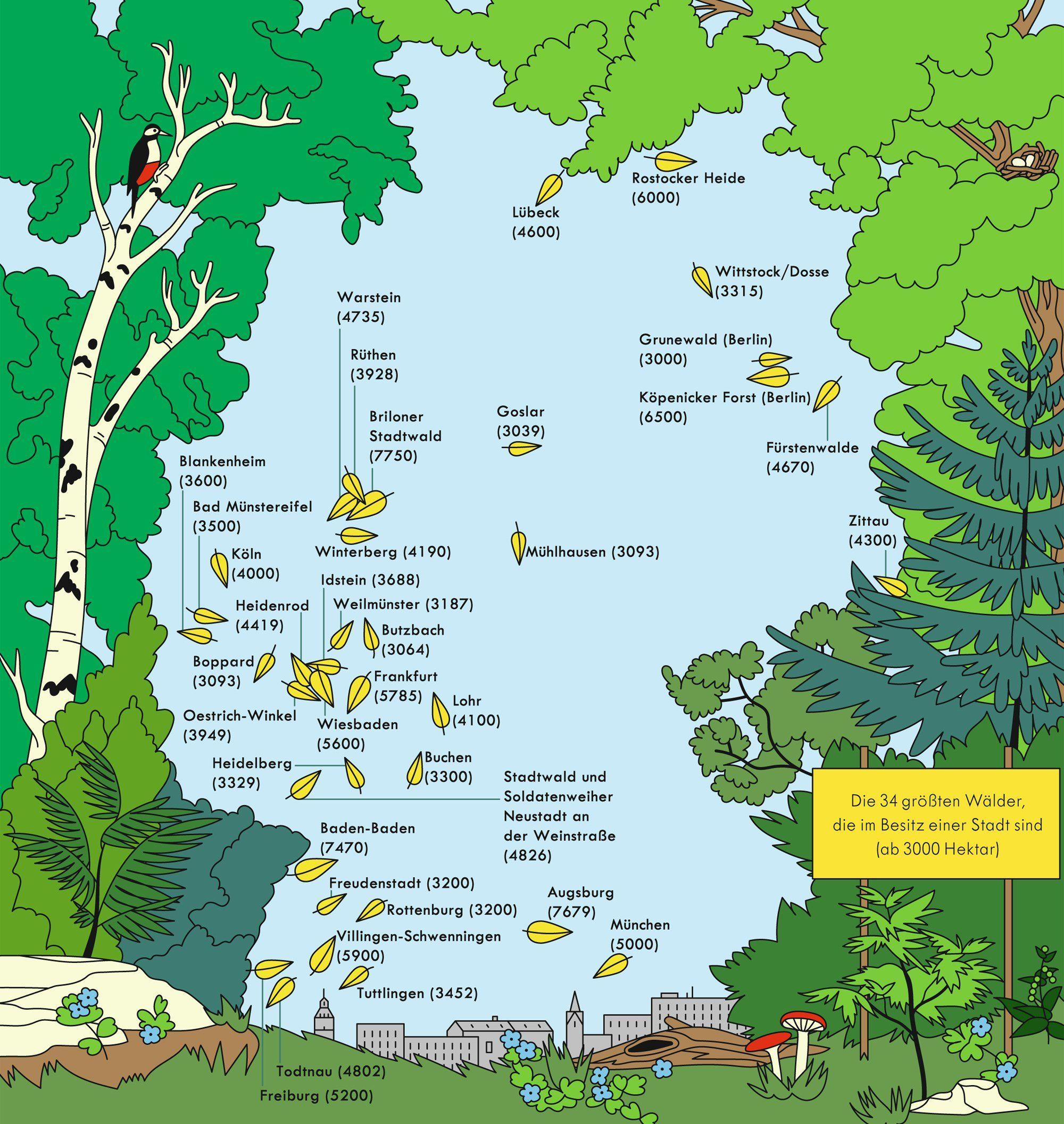 Cc Landstrad Ergebnisse Forstliche Landnutzung Wieviel Wald