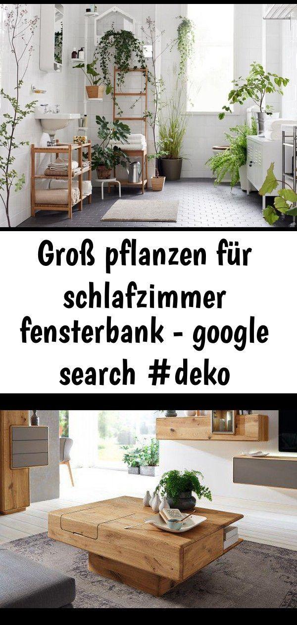 Tolle Pflanzen für die Schlafzimmerfensterbank  google search  3 Tolle Pflanzen für die Schlafzimmerfensterbank  google search  3