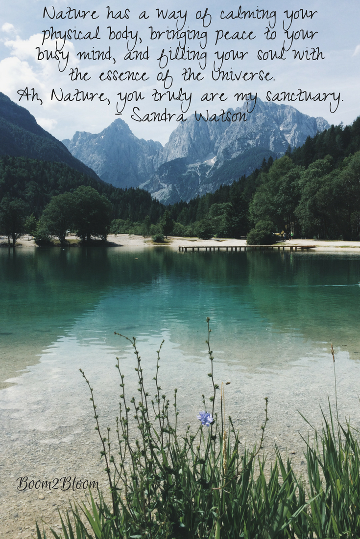 Nature is My Sanctuary Quotes About Nature Ebook
