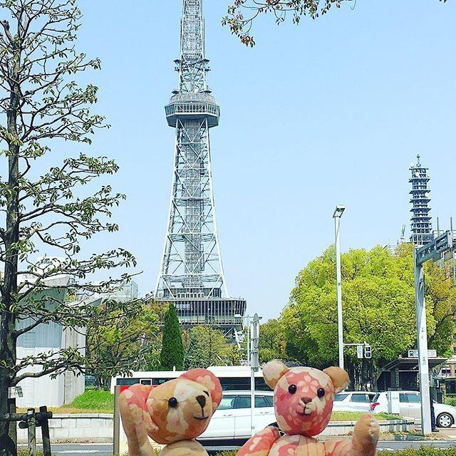 クマちゃんズ、今日のテレビ塔前からこんにちはー  桜はこの位置からは写りませんでした が、まだ咲いてます❀.(*´◡`*)❀. #名古屋 #名古屋観光 #東亜和裁 #テディベア #春 #くまの桜ちゃん #くまの梅ちゃん #nagoya #ぬい撮り #ぬいぐるみと撮り隊