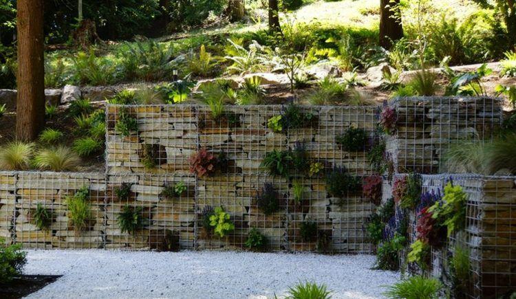 Gabionen als Deko im Garten - Eine Mauer mit Pflanzen dekorieren
