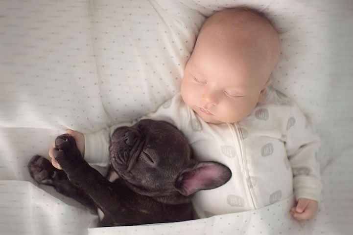 Adorable Friendship of Little Boy Dilan and His French Bulldog