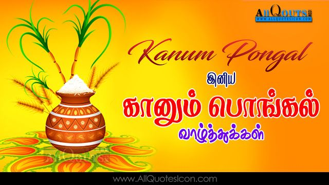Best Kanum Pongal Wishes In Tamil Hd Wallpapers Inspiration Quotes