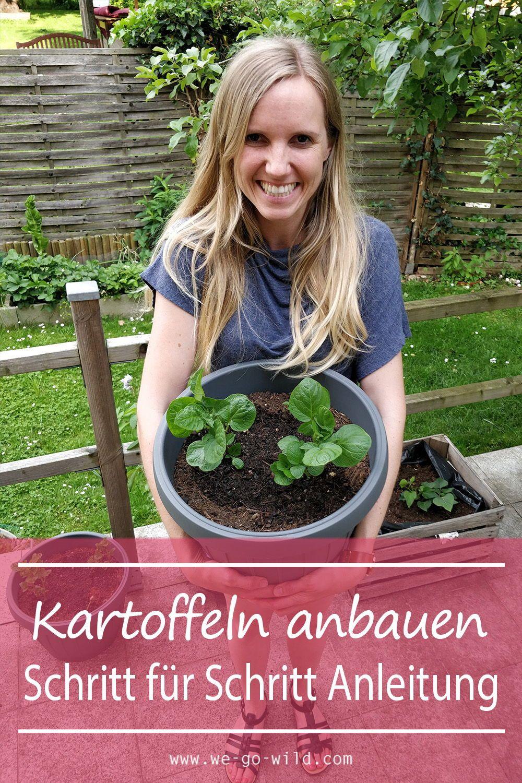 Kartoffeln anbauen im Topf & Garten - WE GO WILD