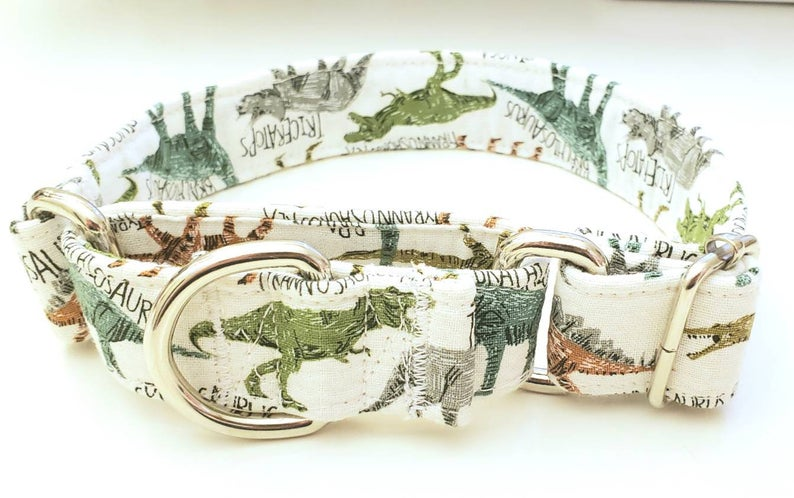 Martingale Dog Collar Dinosaurs T Rex Etsy 26 In 2020 Martingale Dog Collar Martingale Collar Pet Accessories