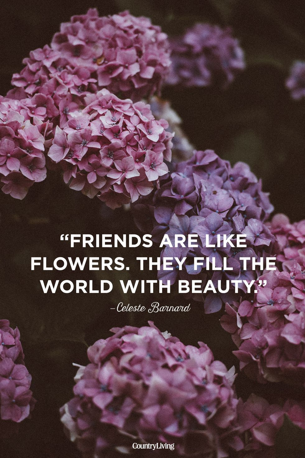 10 Inspiring Quotes To Share With Your Best Friends Cute Friendship Quotes Famous Friendship Quotes Short Friendship Quotes
