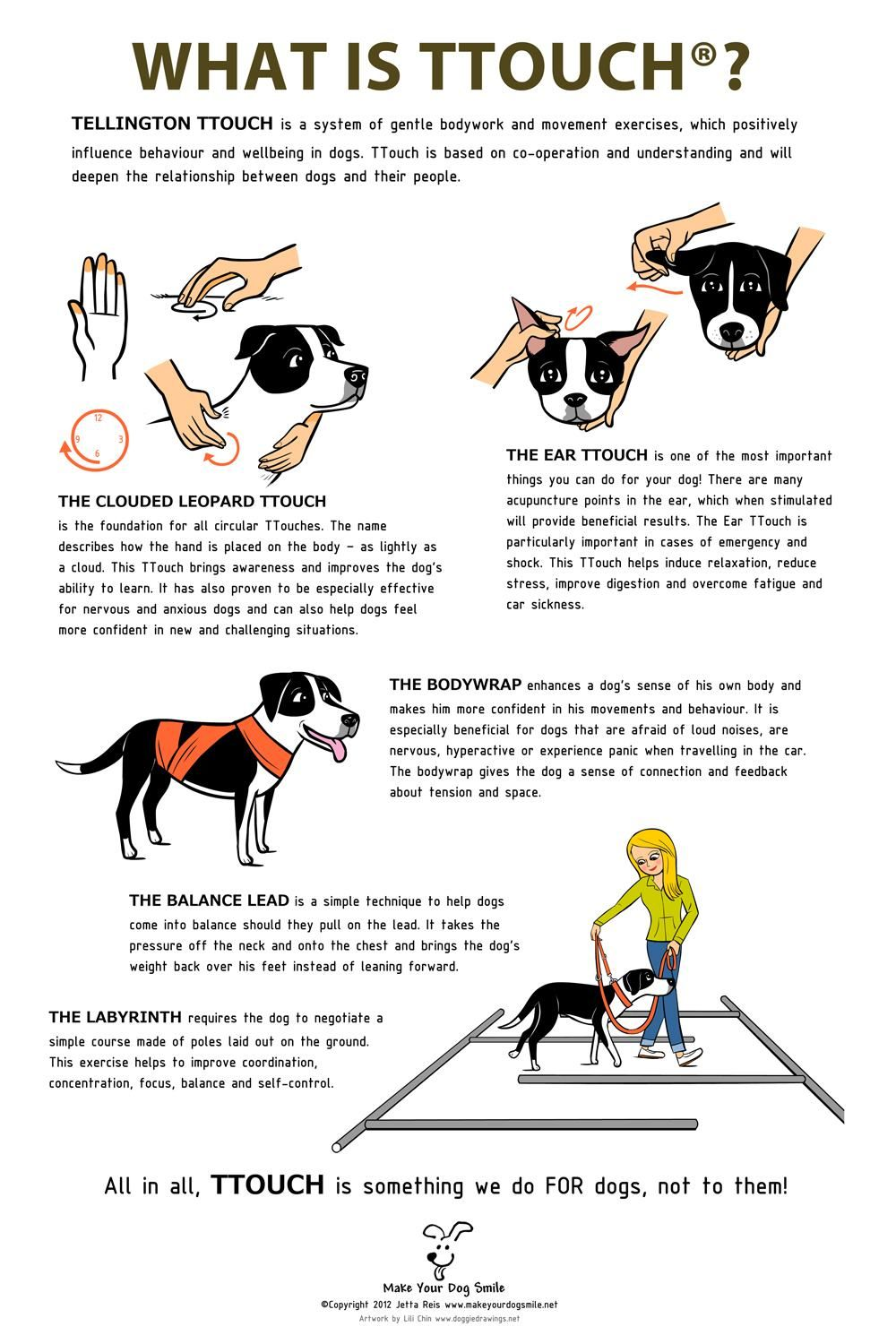 Pin By Nancy Mitchko On For Pets Dog Training Dogs Dog Care