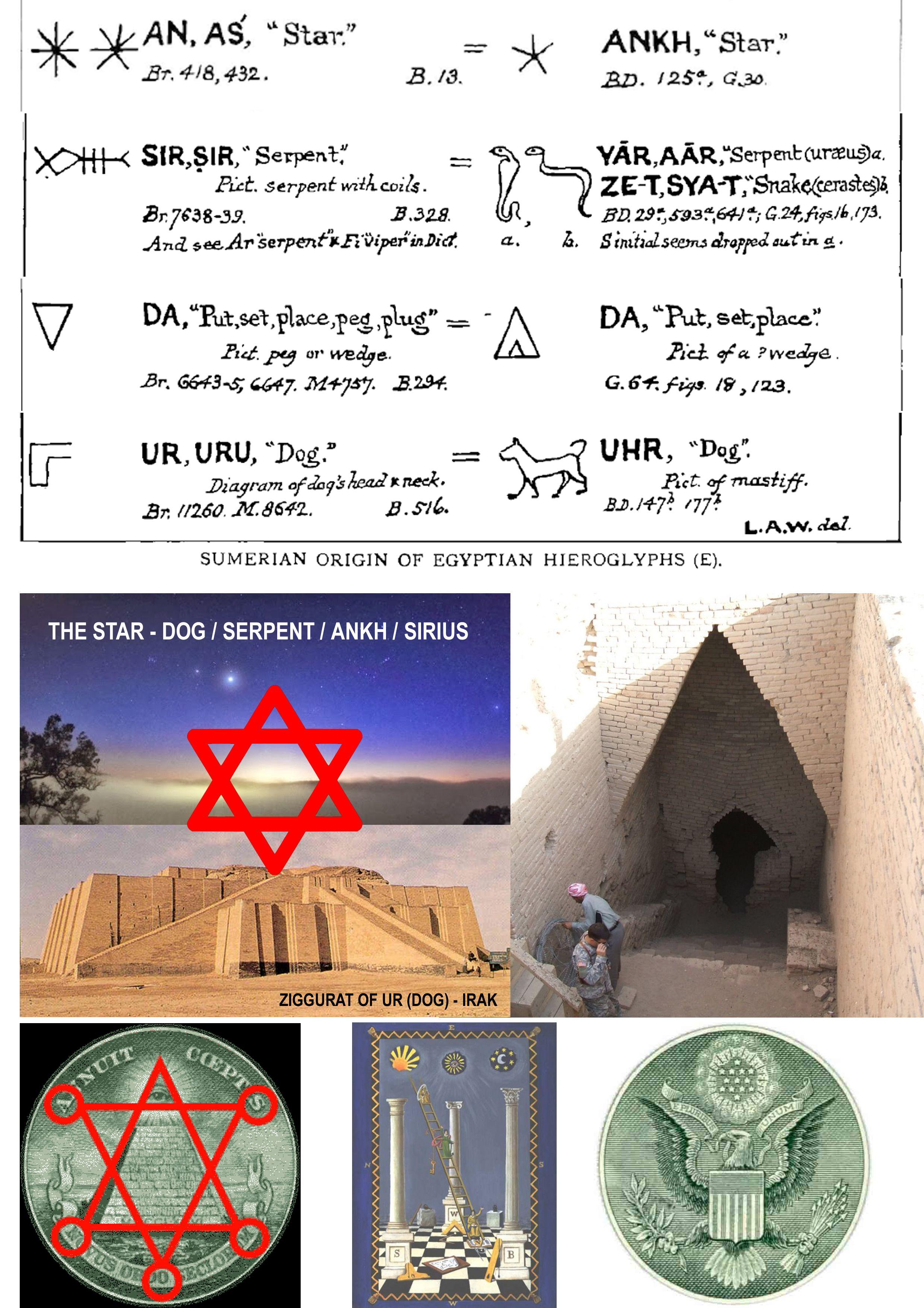 SIRIUS - SUMERIAN - ZIGGURAT OF UR (DOG) - PYRAMID DOLLAR | Sumerian, Sirius,  Dog neck
