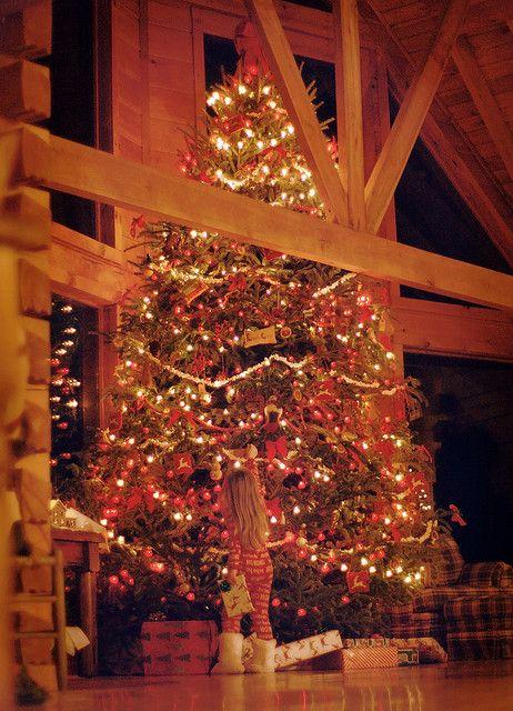 Now that's my kinda Christmas tree