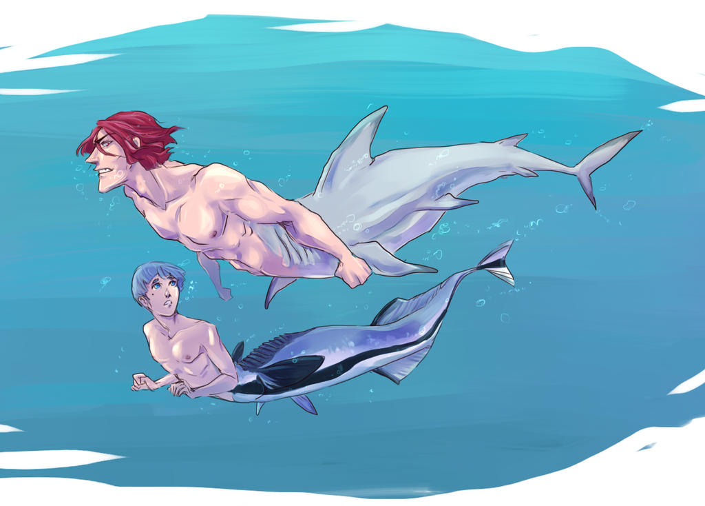 Pin On Free Rin matsuoka is haruka's rival who is also in 11th grade. pin on free