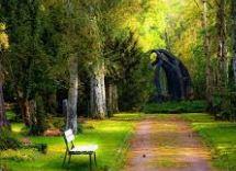 صور خلفيات شاشه جوال للبنات كيوت وجميلة سوداء ايفون Background Images Nature Images Nature Pictures Nature
