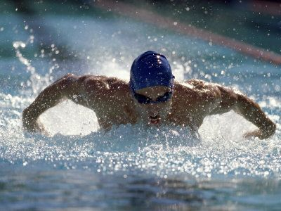 Young Man Swimming The Butterfly Stroke Photographic Print Art Com Man Swimming Butterfly Stroke Swimming
