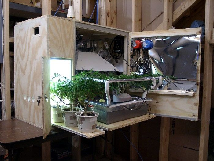 Small Marijuana Closet Grow Room I Like This System It Is