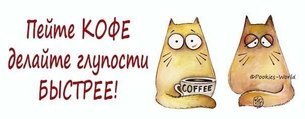 Пей кофе делай глупости энергичней картинки