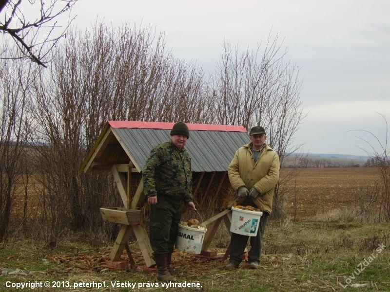 http://www.lovuzdar.sk/foto-200138/jarne-prikrmovanie-repa-kukurica-