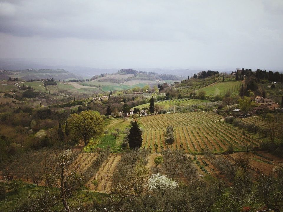 That Italian country side though | San Gimignano, IT