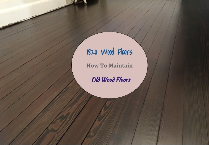 These Are Original 1820 Floors Maintaining Wood Floors Its Ideal