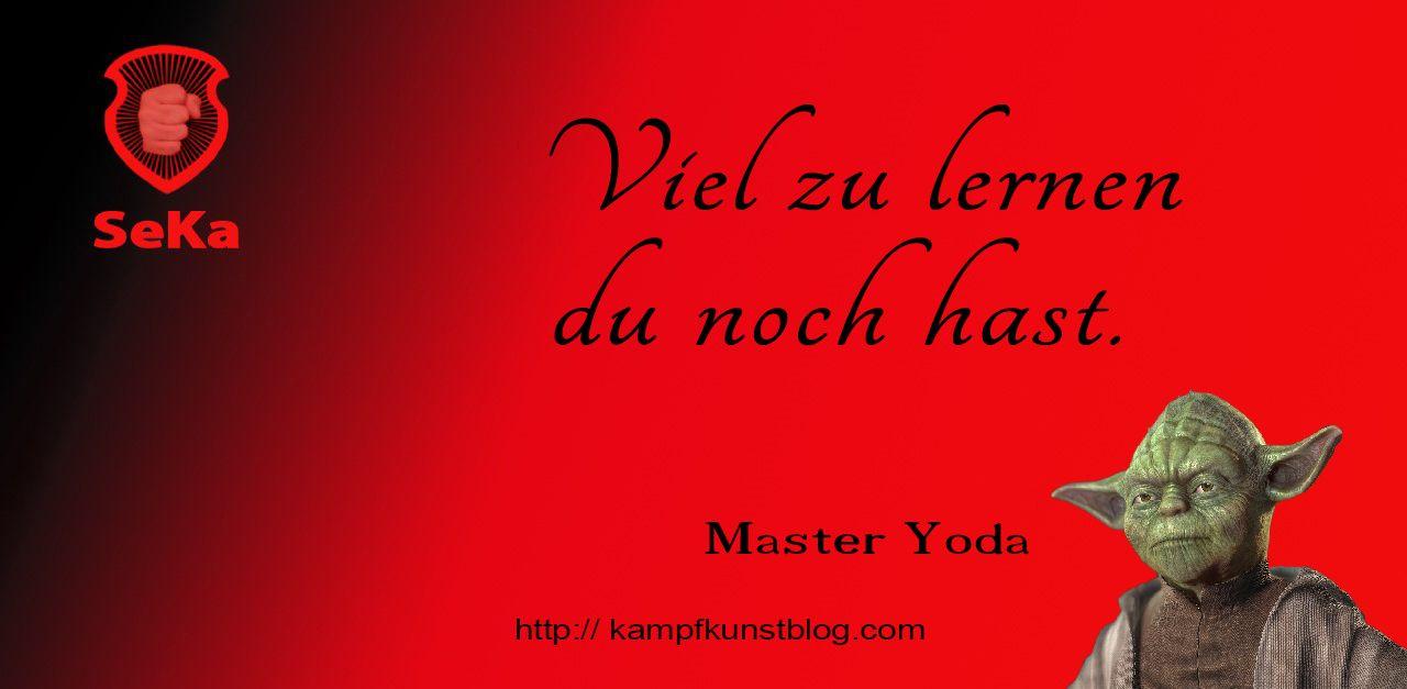 Zitat Von Master Yoda Kampfkunst Zitate Yoda Spruche Zitate