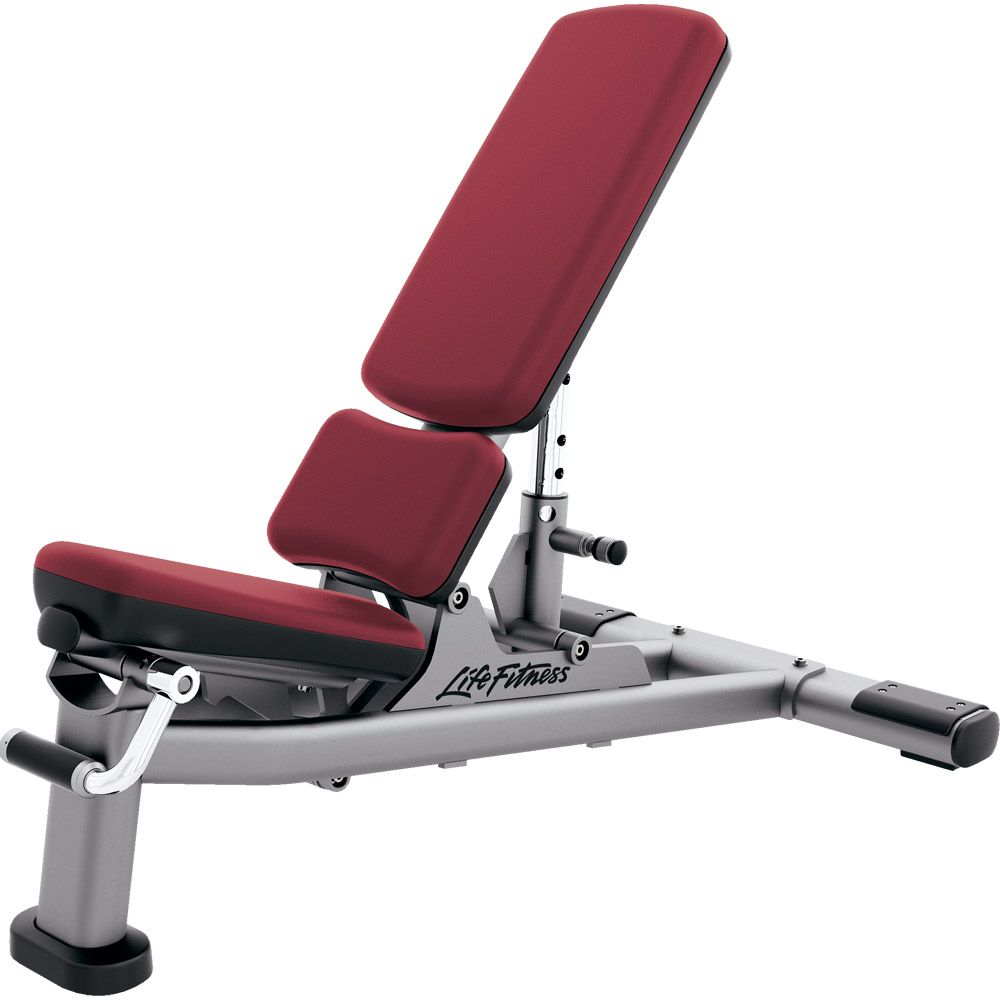 Signature Series Multi Adjustable Bench Adjustable Workout Bench Fit Life Dumbell Workout Abs