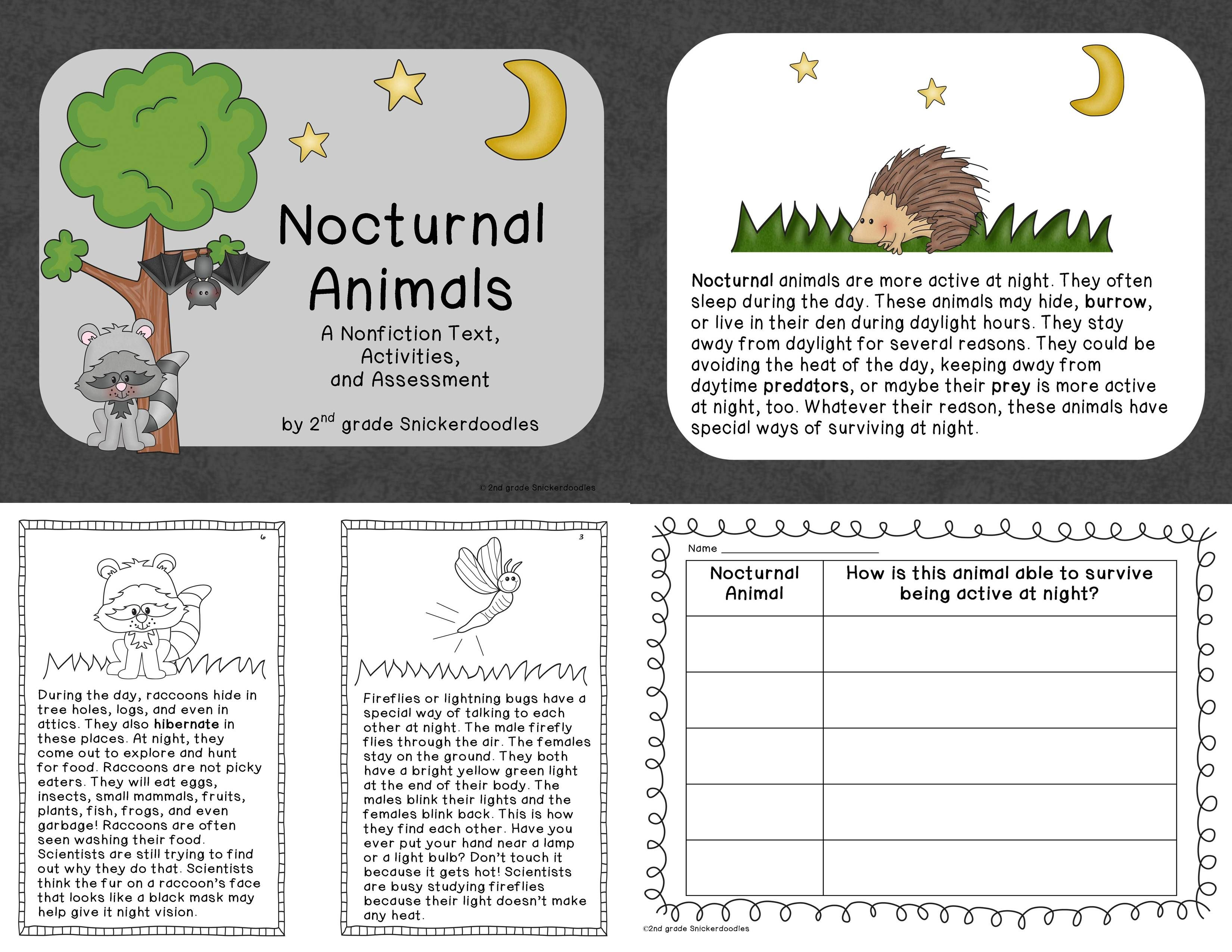 Nocturnal Animals A Nonfiction Text Activities And Assessment Nonfiction Texts Nonfiction Text Activities Kindergarten Worksheets Sight Words Reading comprehension year animals