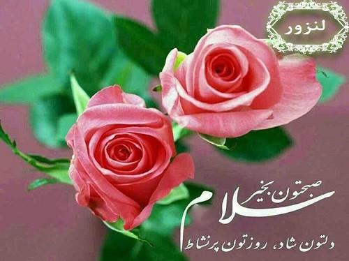 کلیپ صبح بخیر با طلوع خورشید با جستجو در مجله سرگرمی ویمگز کلیپ های جذاب برای صبح بخیر را دانلود کنی Girly Wall Art Beautiful Rose Flowers Good Morning Clips
