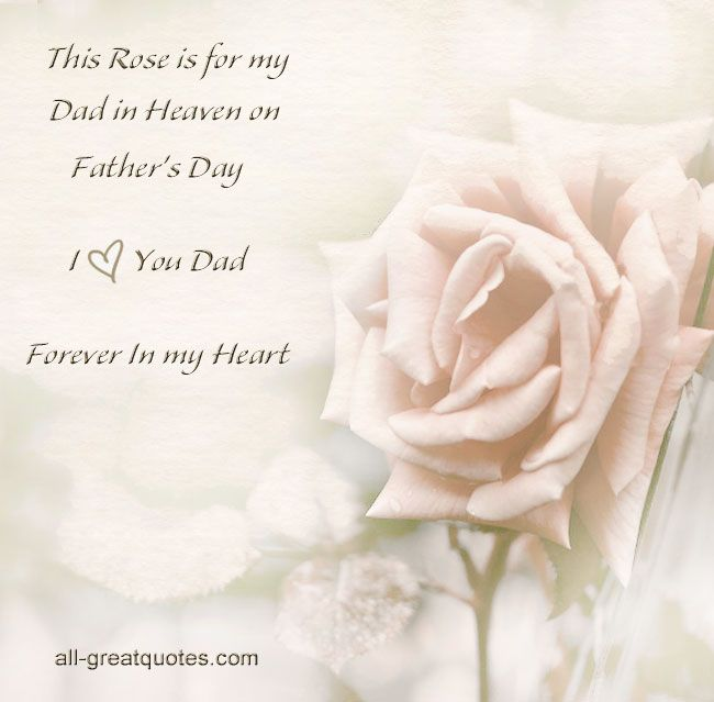 this rose is for my papa in heaven on father s day forever and