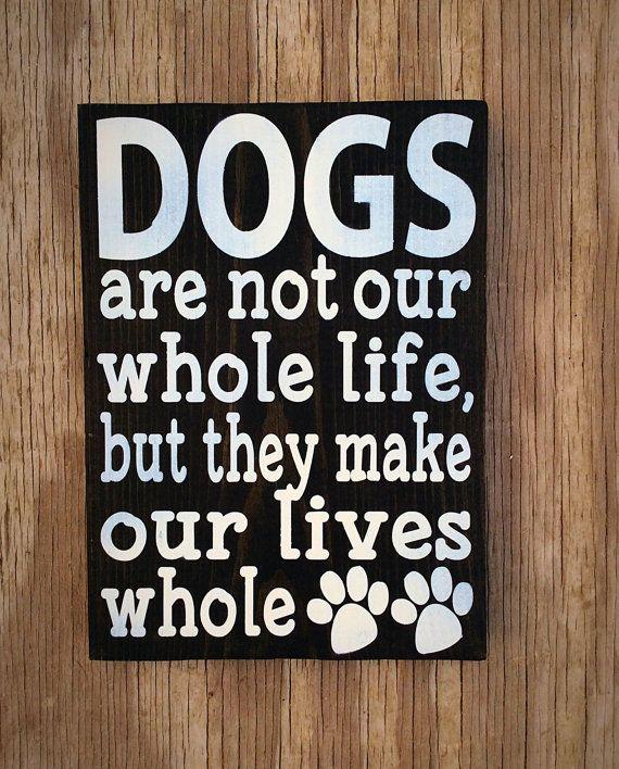 Vast How To Train Dog #dogsitting #DogCostumesDr.Who