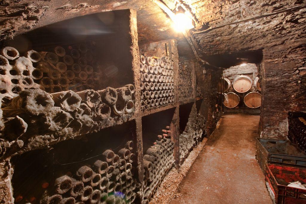 The Secret Stash France Burgundy Michel Lafarge Wine Cellar