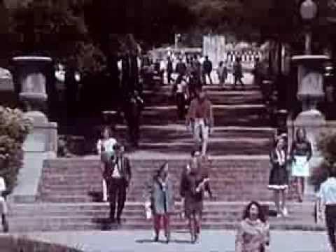 Drug Abuse and Addiction: The Chemical Tomb - 1969 - CharlieDeanArchiveshttp://youtu.be/Nbn0JlnKiZI