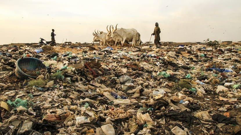 Qué es el contaminación del suelo; causas y consecuencias