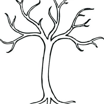 Tree Without Leaves Template Sketch Coloring Page Tree Coloring Page Bare Tree Tree Drawing