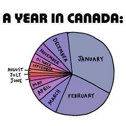A Year In Canada Canada Funny Canadian Humor Canada Memes