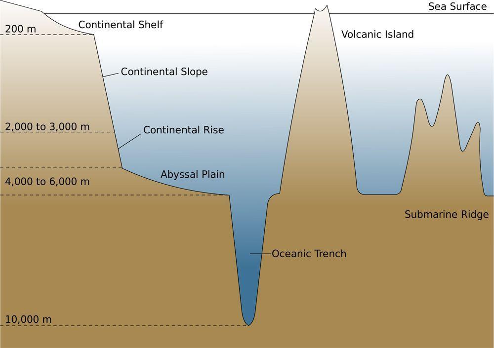 Ocean Trench Ocean Trench Ocean Science High School Earth Science