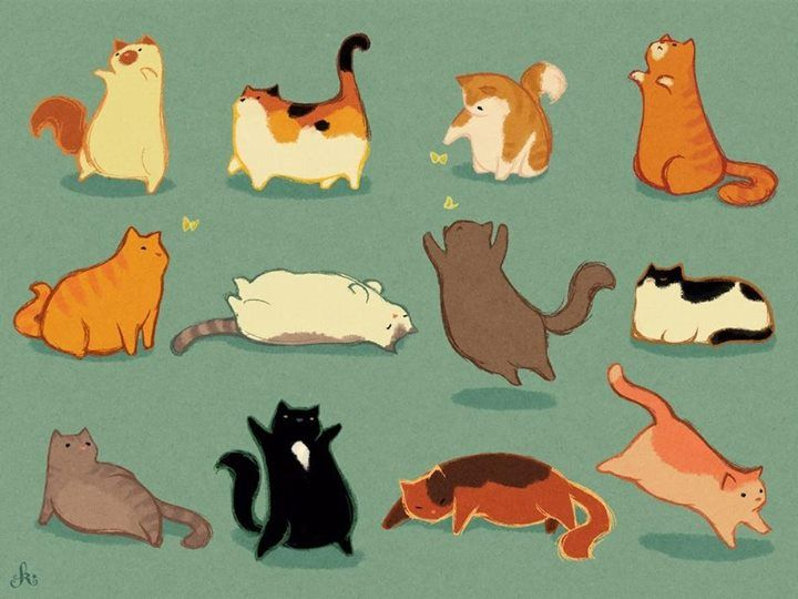 Kristin Kemper  Fat Cats http://kristinkemper.tumblr.com/
