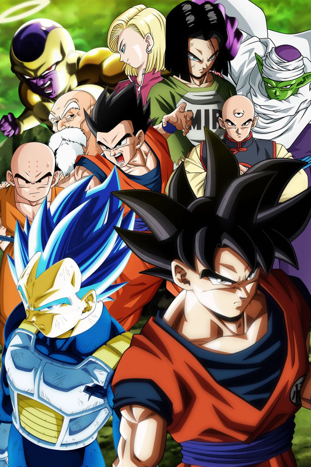 Dragon Ball Super PosterTeam Universe 7 12in x 18in Free Shipping
