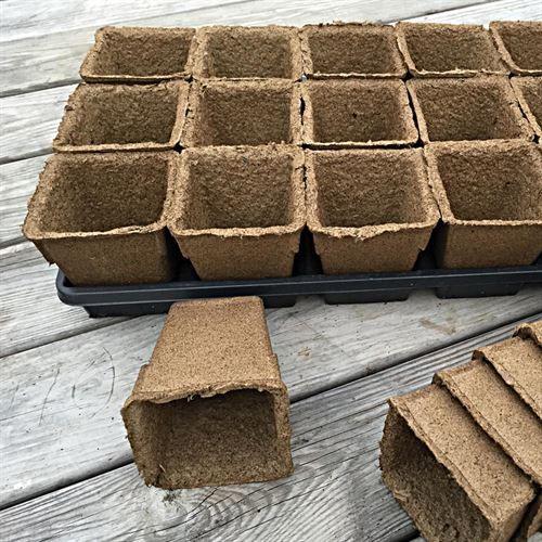 Cowpots Biodegradable Pots Diy Decoração 400 x 300