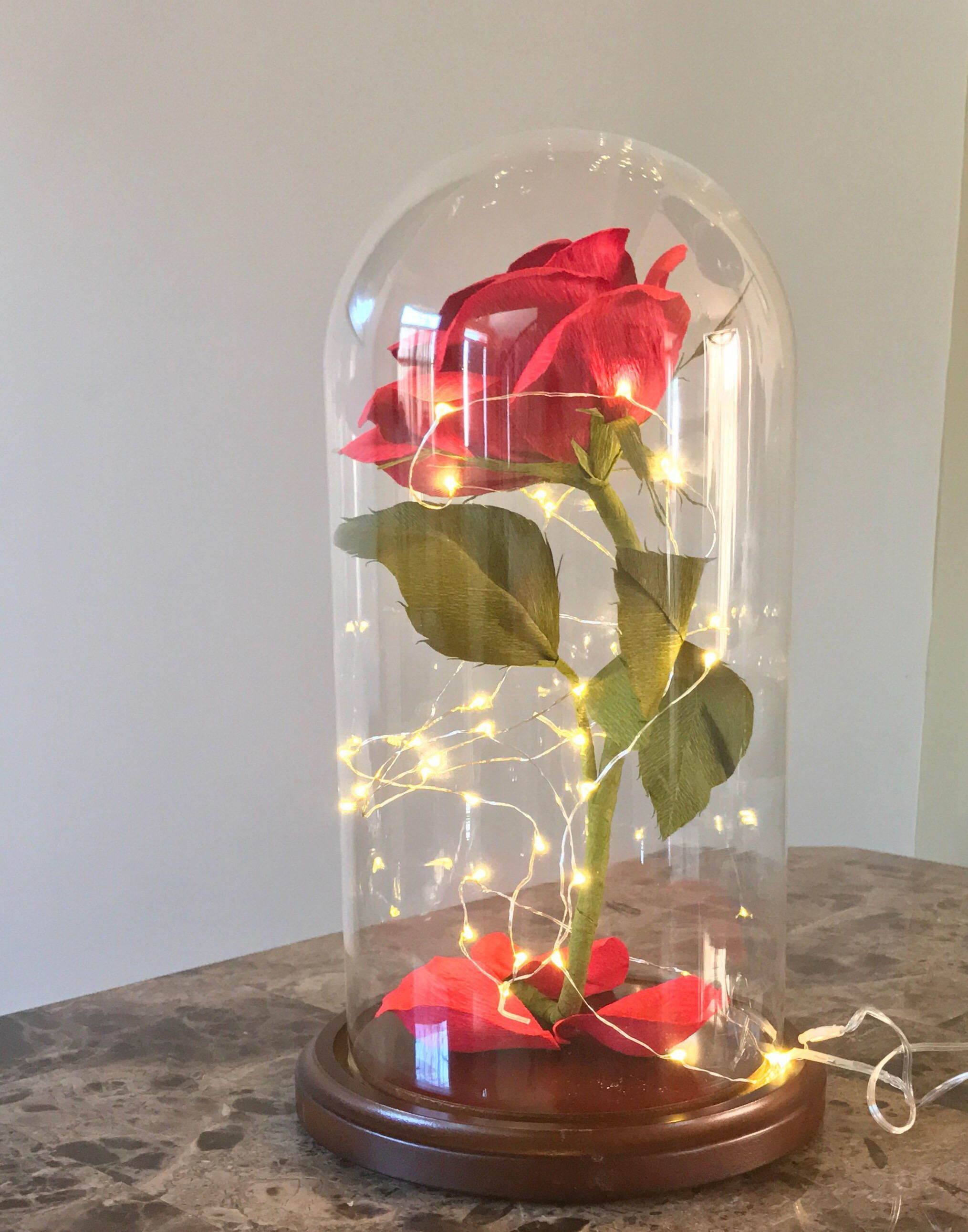 Pin by the painted petaler on beauty and the beast in 2018 pin by the painted petaler on beauty and the beast in 2018 pinterest glass dome display crepe paper and glass domes izmirmasajfo