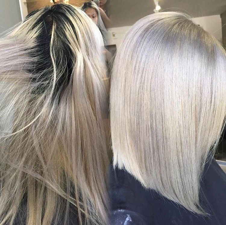 Root Touch Up Level 2 To Silver Ash Blonde Root Touch Up