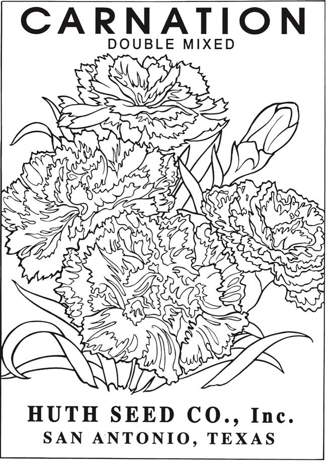 Welcome to Dover Publications - CH Vintage Flower Seed Packets ...
