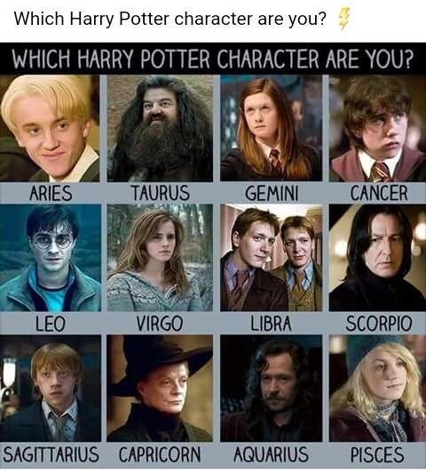 Pin By Babymo On Tumblr Harry Potter Zodiac Zodiac Zodiac Signs Funny